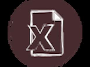 XLS Basics icon