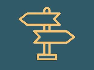 Vision Course icon