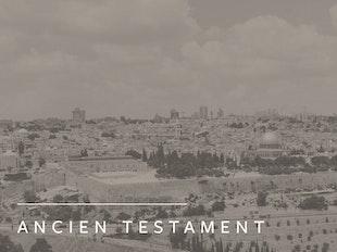 Interpréter le Pentateuque et les livres historiques icon