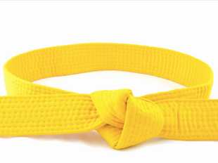 White to Yellow Belt Course icon