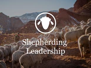 Shepherding Leadership icon