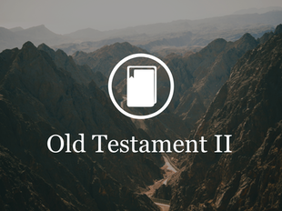 Old Testament Survey II icon