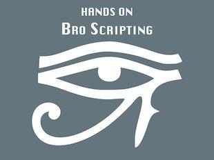 Bro Scripting icon