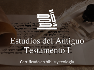 Estudios del Antiguo Testamento I icon