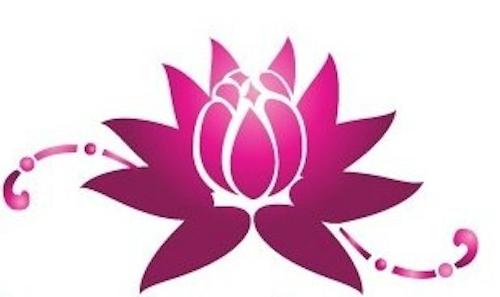 Havana Wellness Studio icon
