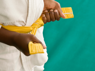 White to Yellow Belt Course (Promo) icon