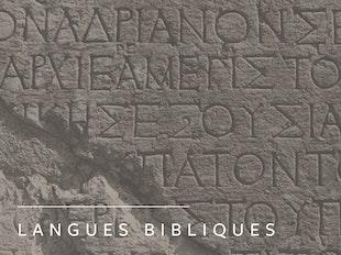 Initiation au grec biblique I (ANGLAIS) icon
