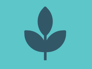 Church Planting Collection II (6 Courses) icon