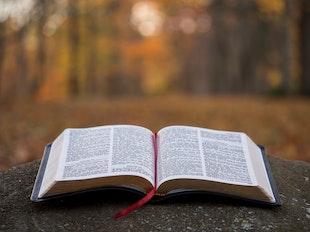 Biblical Worldview & Academic Rigor icon