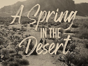 A Spring in the Desert icon