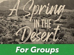 A Spring in the Desert For Groups icon