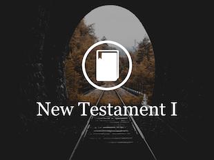 New Testament Survey I icon