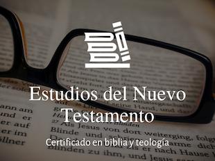 Estudios del Nuevo Testamento icon