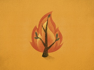 Moses and the Burning Bush icon