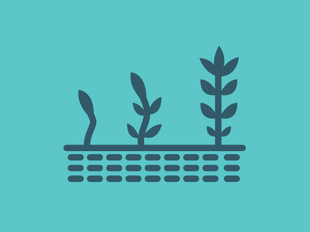 Creating Effective Discipleship icon