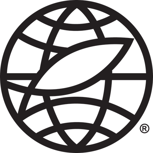 EE International icon