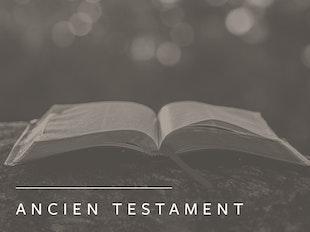 Théologie biblique de l'Ancien Testament icon
