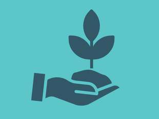 Church Planting Collection I (6 Courses) icon