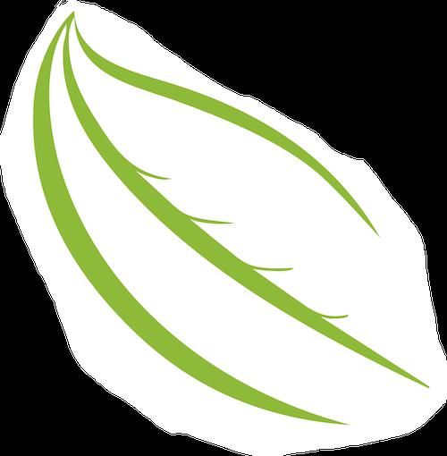 Beyond Green Farm to School icon