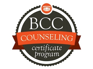 Lay Counseling Certificate (3 in 1) icon