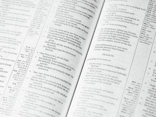 Bible Survey icon