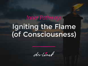 Inner Pathways - Igniting the Flame- AUDIOBOOK. icon