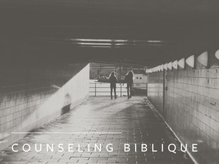 Counseling biblique III icon