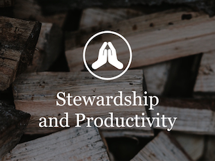 Stewardship and Productivity icon
