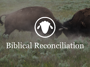 Biblical Reconciliation: Going Beyond Peacemaking icon