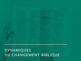 Dynamiques du changement biblique icon
