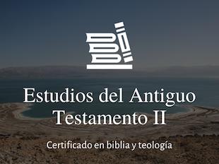 Estudios del Antiguo Testamento II icon