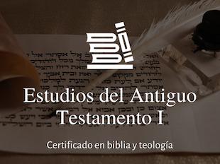 Estudios del Antiguo Testamento I. icon