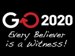 GO2020 icon